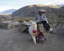 Frank Slomski: Peru
