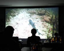 Film- und Fotoabend Tauchclub Plattling